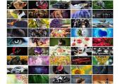 Подборка обоев для Вашего рабочего стола от Autozs.ru